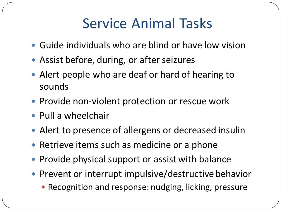 Service Animal Tasks Guide individuals who are blind or have low vision Assist before, during, or after seizures Alert people who are deaf or hard of hearing to sounds Provide non-violent protection or rescue work Pull a wheelchair Alert to presence of allergens or decreased insulin Retrieve items such as medicine or a phone Provide physical support or assist with balance Prevent or interrupt impulsive/destructive behavior Recognition and response: nudging, licking, pressure