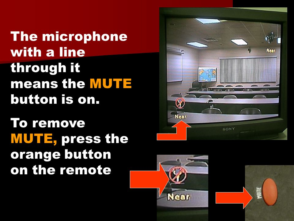 The microphone with a line through it means the MUTE button is on. To remove MUTE, press the orange button on the remote