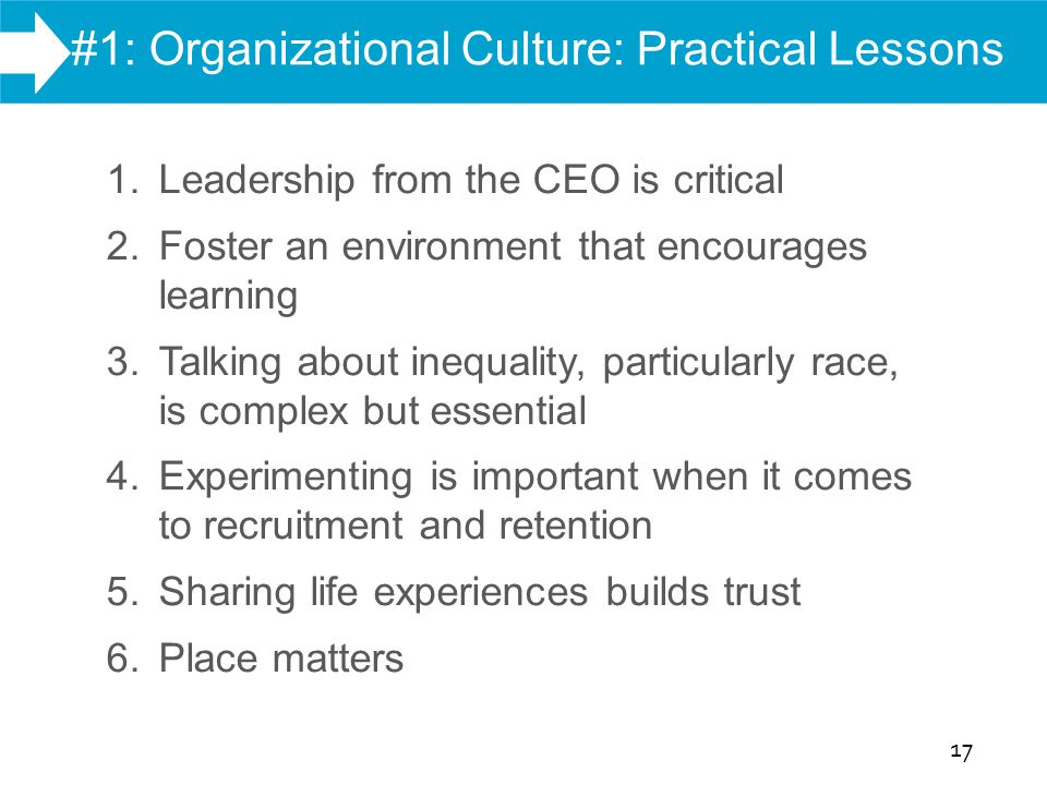 WHAT WE DO #1: Organizational Culture: Practical Lessons 17 Report Findings 1. Leadership from the CEO is critical 2. Foster an environment that encou