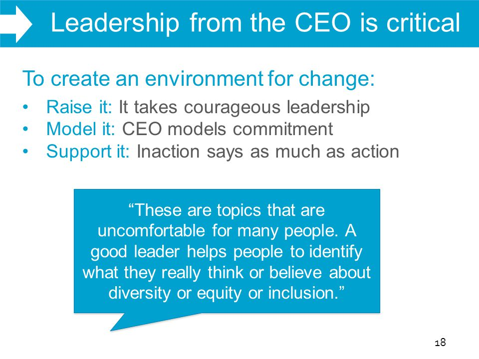 WHAT WE DO Leadership from the CEO is critical 18 To create an environment for change: Raise it: It takes courageous leadership Model it: CEO models c