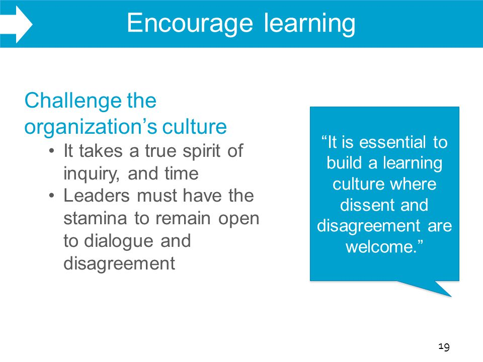 WHAT WE DO Encourage learning 19 Challenge the organization's culture It takes a true spirit of inquiry, and time Leaders must have the stamina to remain open to dialogue and disagreement It is essential to build a learning culture where dissent and disagreement are welcome.