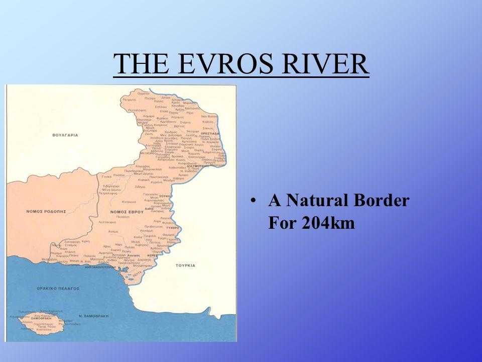 BIODIVERSITY REPORT The Evros Delta Sgouridis Fotis