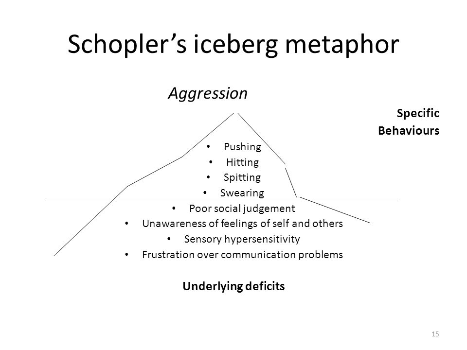 15 Schopler's iceberg metaphor Aggression Specific Behaviours Pushing Hitting Spitting Swearing Poor social judgement Unawareness of feelings of self