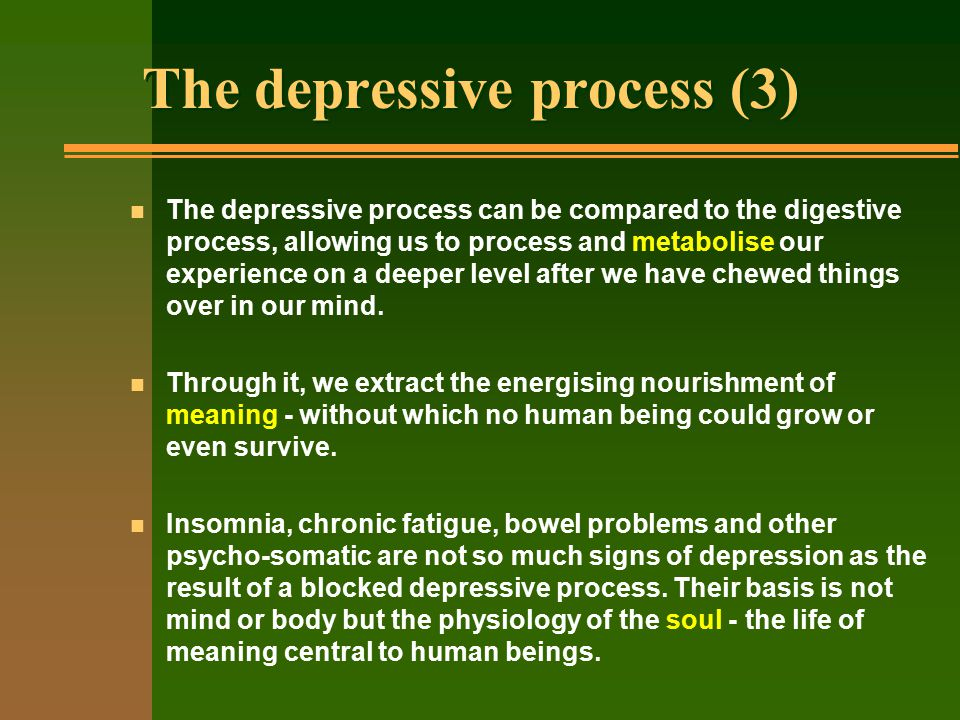 The depressive process (3) n The depressive process can be compared to the digestive process, allowing us to process and metabolise our experience on a deeper level after we have chewed things over in our mind.