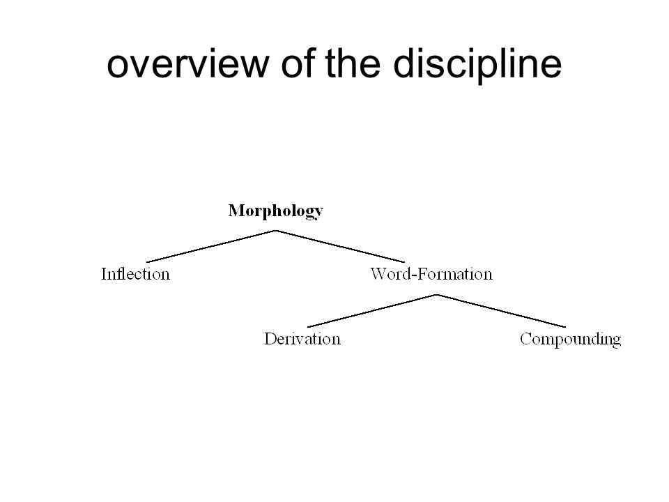 overview of the discipline