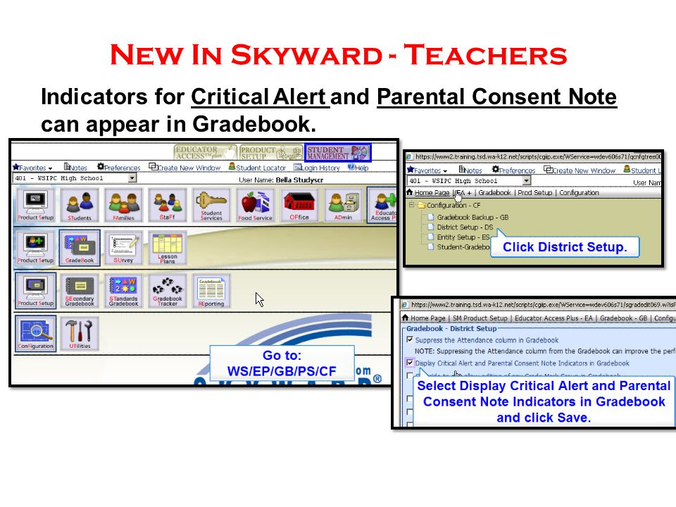 New In Skyward - Teachers Indicators for Critical Alert and Parental Consent Note can appear in Gradebook.