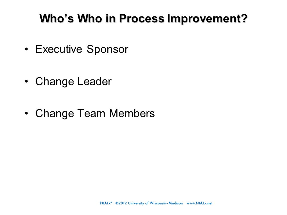Who's Who in Process Improvement. Who's Who in Process Improvement.