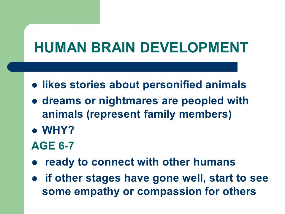 HUMAN BRAIN DEVELOPMENT likes stories about personified animals dreams or nightmares are peopled with animals (represent family members) WHY.