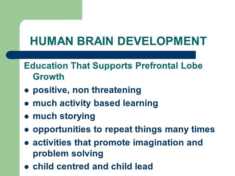HUMAN BRAIN DEVELOPMENT Education That Supports Prefrontal Lobe Growth positive, non threatening much activity based learning much storying opportunities to repeat things many times activities that promote imagination and problem solving child centred and child lead