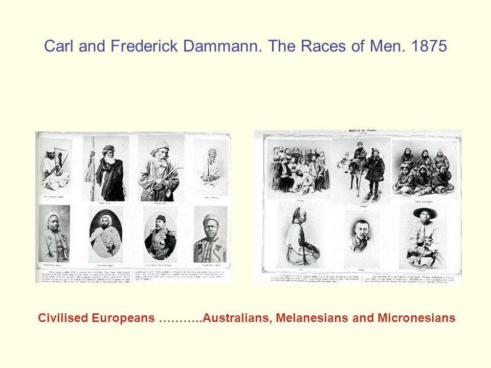 Carl and Frederick Dammann. The Races of Men.