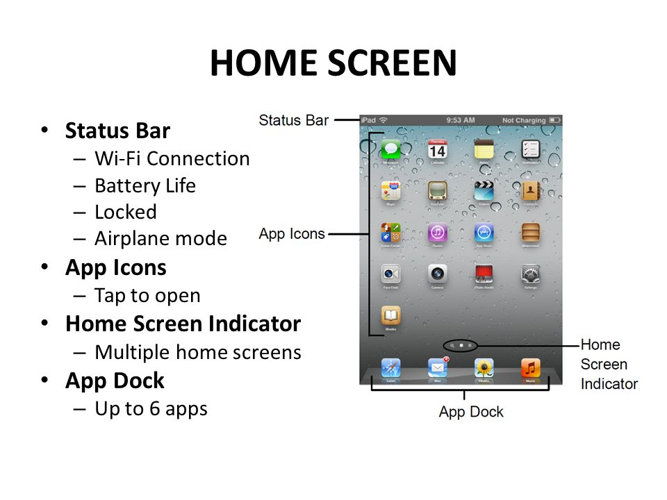 HOME SCREEN Status Bar – Wi-Fi Connection – Battery Life – Locked – Airplane mode App Icons – Tap to open Home Screen Indicator – Multiple home screen