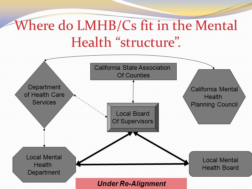 Where do LMHB/Cs fit in the Mental Health structure .