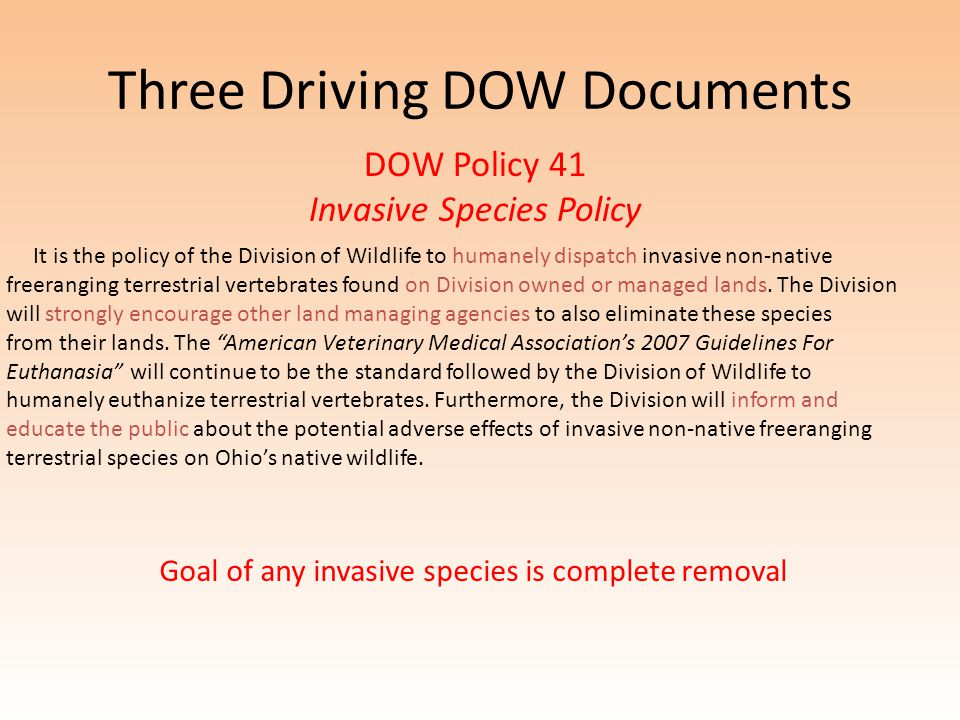 Three Driving DOW Documents DOW Policy 41 Invasive Species Policy It is the policy of the Division of Wildlife to humanely dispatch invasive non-native freeranging terrestrial vertebrates found on Division owned or managed lands.
