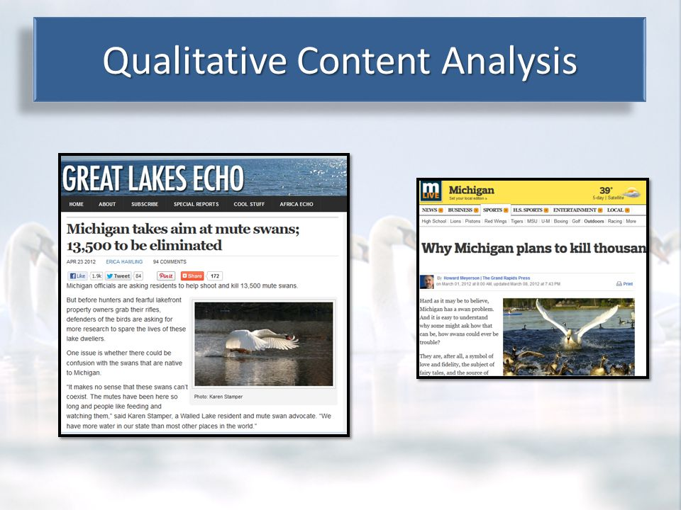 Content Analysis Results Qualitative Content Analysis