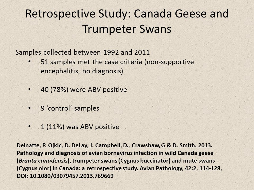 Retrospective Study: Canada Geese and Trumpeter Swans Delnatte, P.
