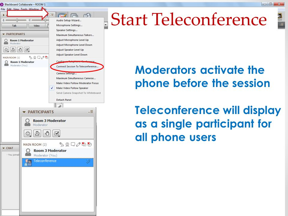 Start Teleconference Moderators activate the phone before the session Teleconference will display as a single participant for all phone users
