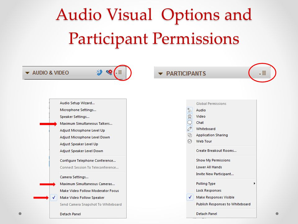 Audio Visual Options and Participant Permissions