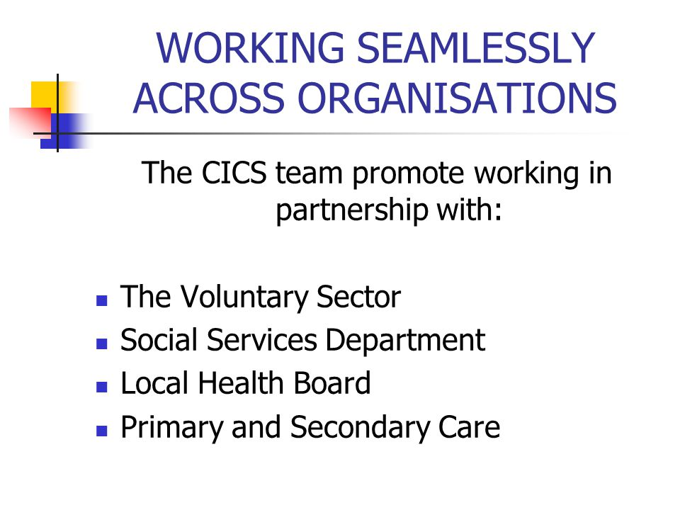 WORKING SEAMLESSLY ACROSS ORGANISATIONS The CICS team promote working in partnership with: The Voluntary Sector Social Services Department Local Healt