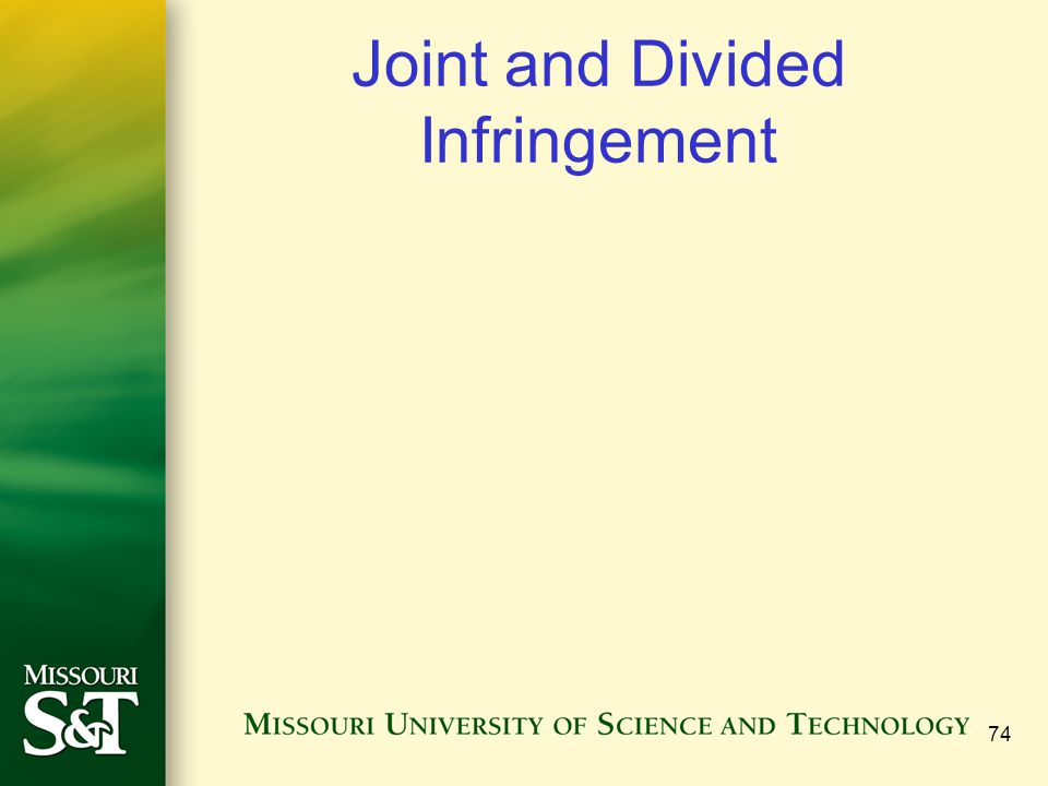 Joint and Divided Infringement 74