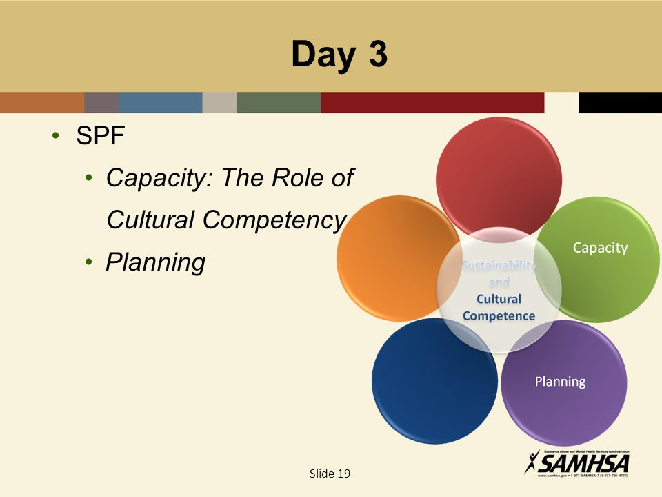 Day 3 SPF Capacity: The Role of Cultural Competency Planning Capacity Slide 19