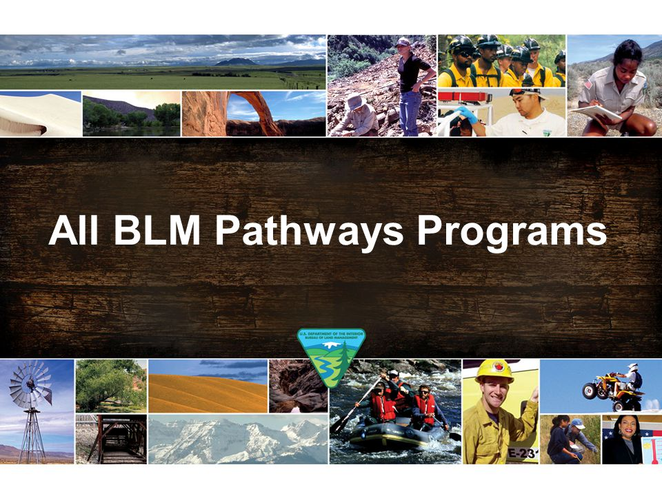 All BLM Pathways Programs