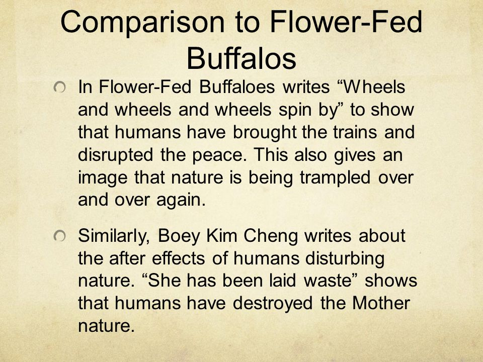 Comparison to Flower-Fed Buffalos In Flower-Fed Buffaloes writes Wheels and wheels and wheels spin by to show that humans have brought the trains and disrupted the peace.