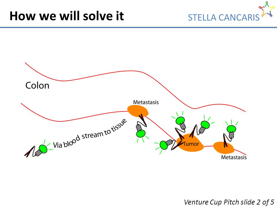 How we will solve it Venture Cup Pitch slide 2 of 5