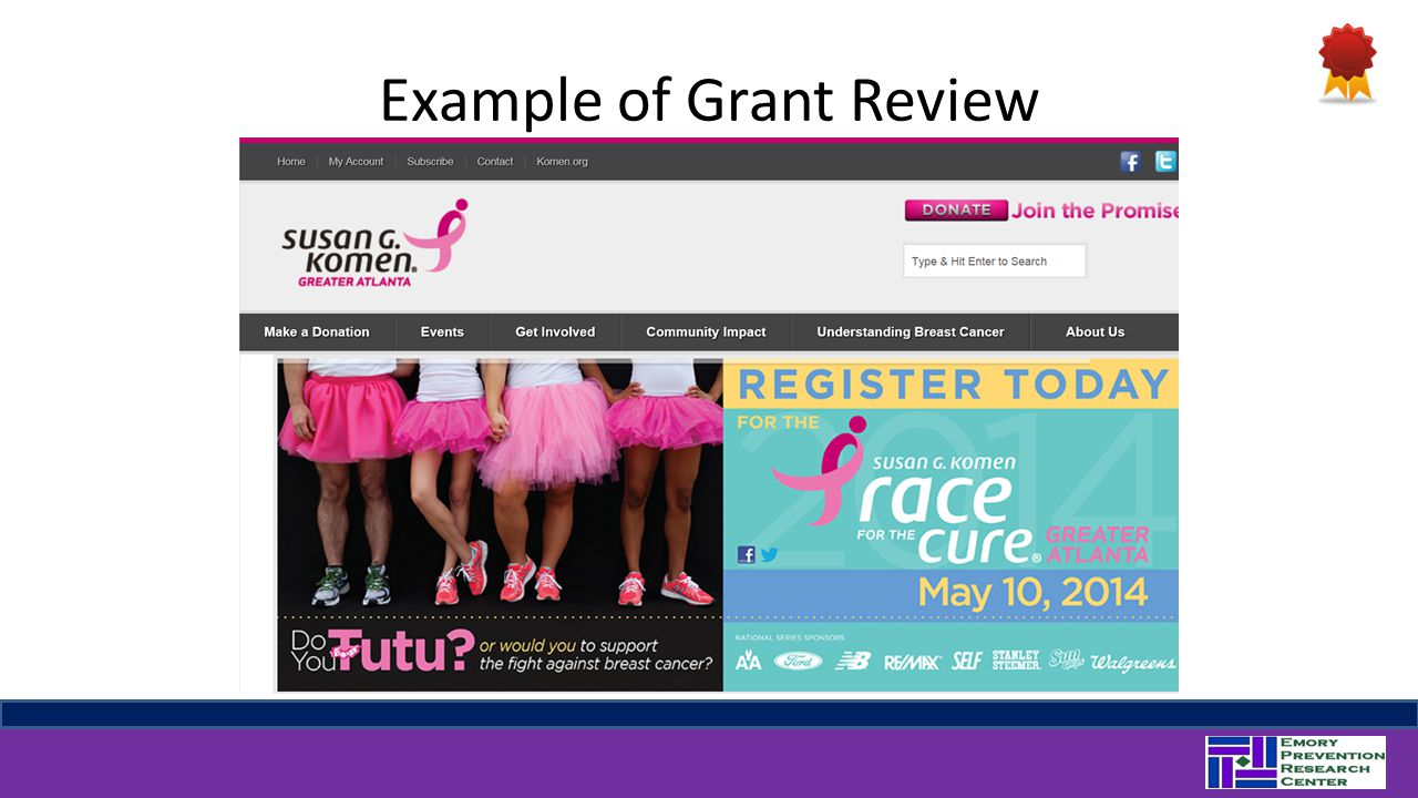 Example of Grant Review