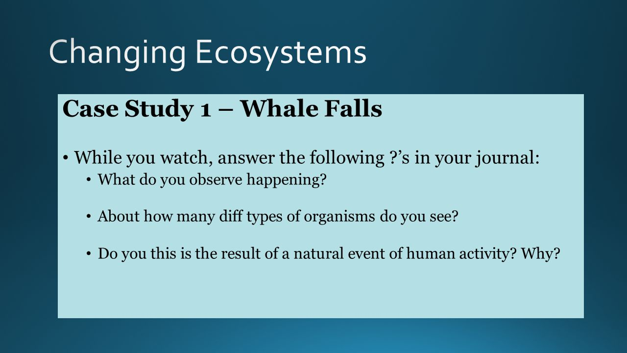 Case Study 1 – Whale Falls While you watch, answer the following 's in your journal: What do you observe happening.