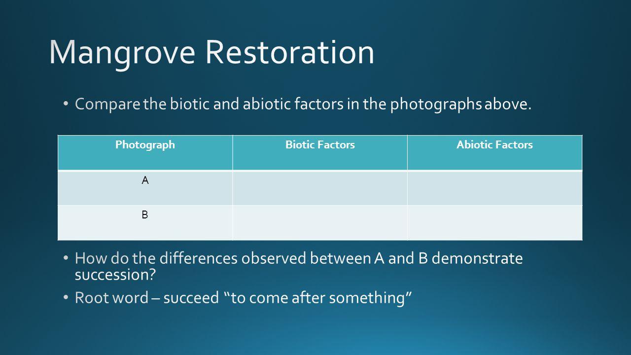 PhotographBiotic FactorsAbiotic Factors A B