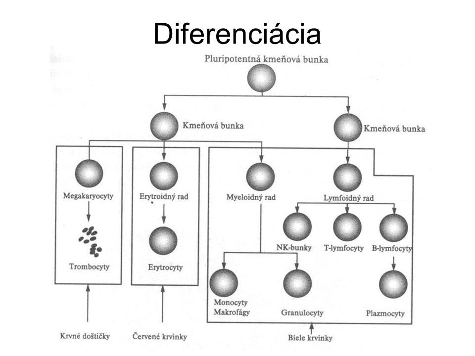 Diferenciácia