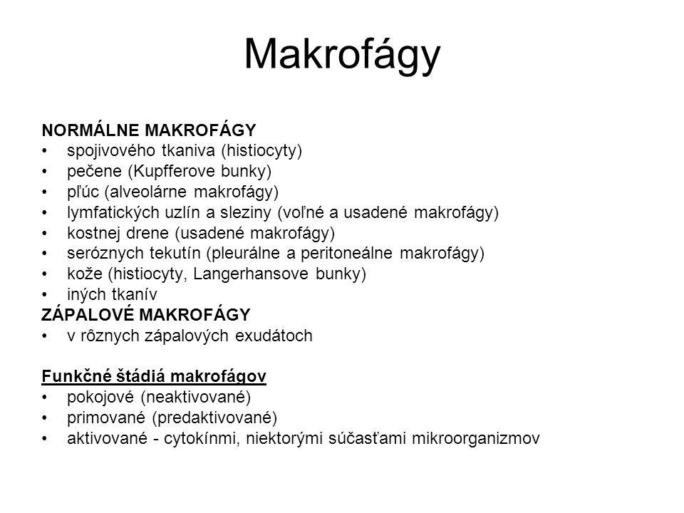 Makrofágy NORMÁLNE MAKROFÁGY spojivového tkaniva (histiocyty) pečene (Kupfferove bunky) pľúc (alveolárne makrofágy) lymfatických uzlín a sleziny (voľn