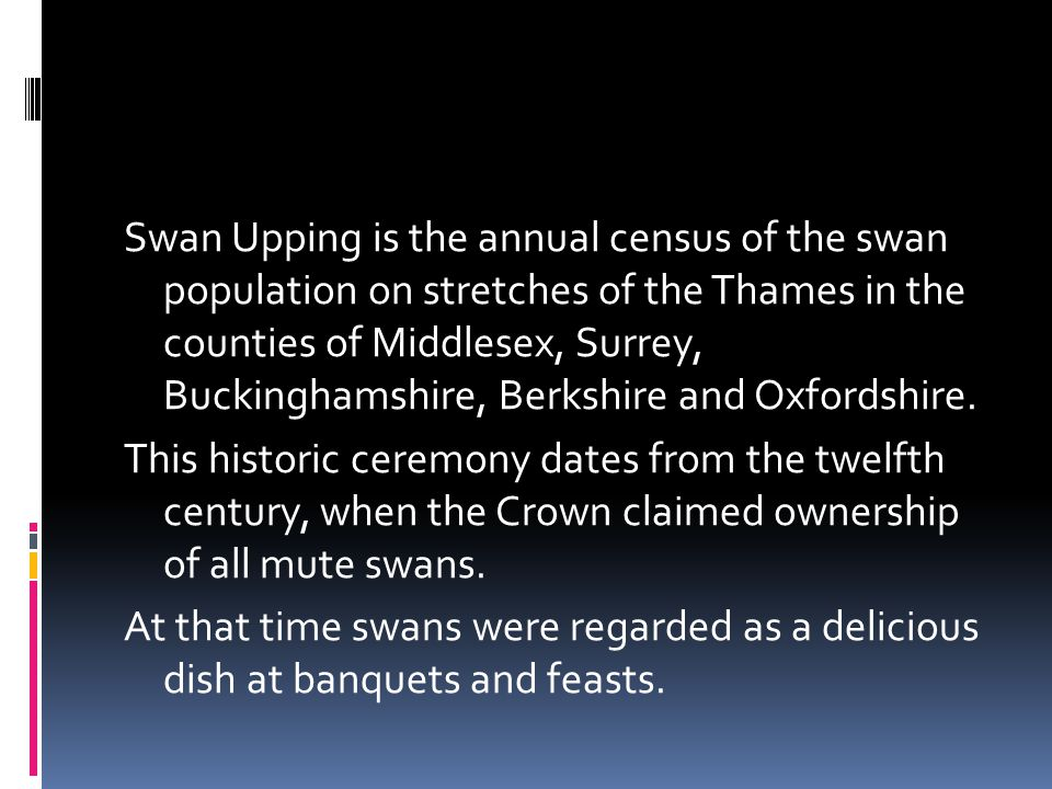 Swan Upping is the annual census of the swan population on stretches of the Thames in the counties of Middlesex, Surrey, Buckinghamshire, Berkshire and Oxfordshire.