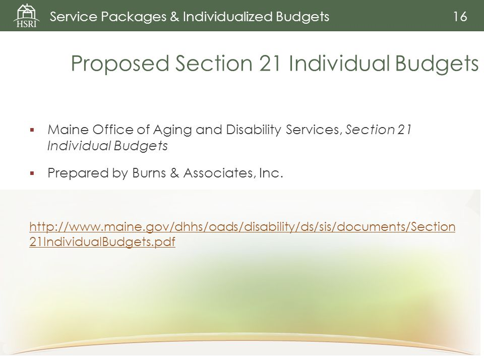 Proposed Section 21 Individual Budgets  Maine Office of Aging and Disability Services, Section 21 Individual Budgets  Prepared by Burns & Associates