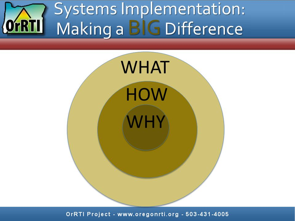 Systems Implementation: Making a BIG Difference WHY HOW WHAT