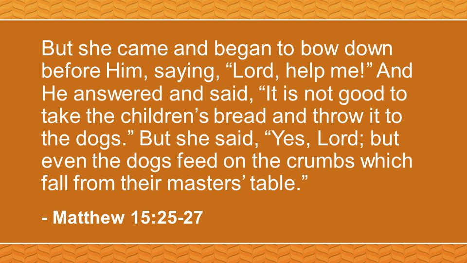But she came and began to bow down before Him, saying, Lord, help me! And He answered and said, It is not good to take the children's bread and throw it to the dogs. But she said, Yes, Lord; but even the dogs feed on the crumbs which fall from their masters' table. - Matthew 15:25-27