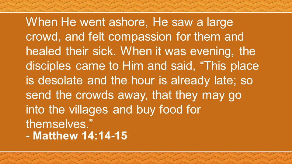 When He went ashore, He saw a large crowd, and felt compassion for them and healed their sick.