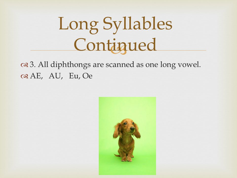   3. All diphthongs are scanned as one long vowel.  AE, AU, Eu, Oe Long Syllables Continued