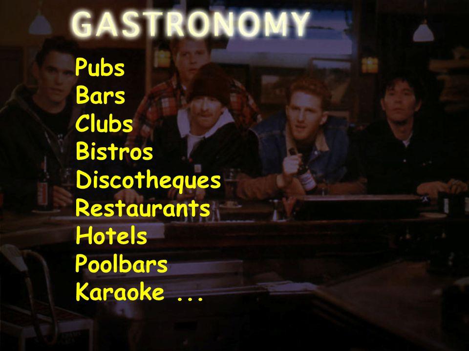 Positioning-3 Pubs Bars Clubs Bistros Discotheques Restaurants Hotels Poolbars Karaoke...