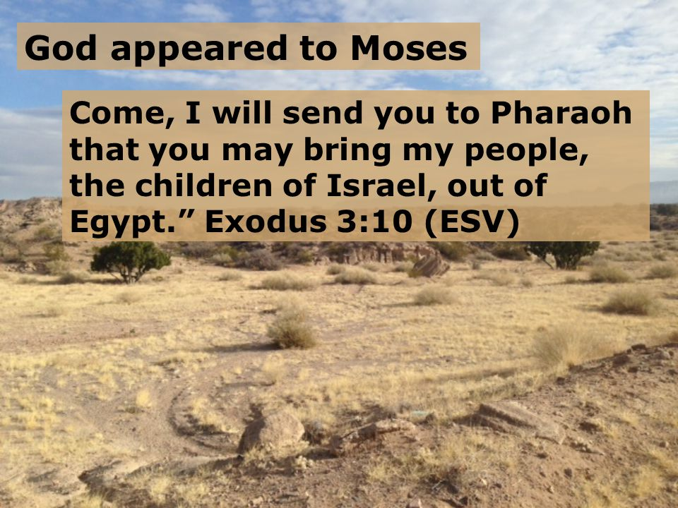 A Series of Excuses He said, But I will be with you, and this shall be the sign for you, that I have sent you: when you have brought the people out of Egypt, you shall serve God on this mountain. Exodus 3:12 (ESV) Who am I?