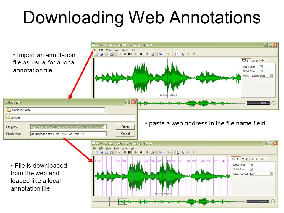 Downloading Web Annotations paste a web address in the file name field File is downloaded from the web and loaded like a local annotation file.