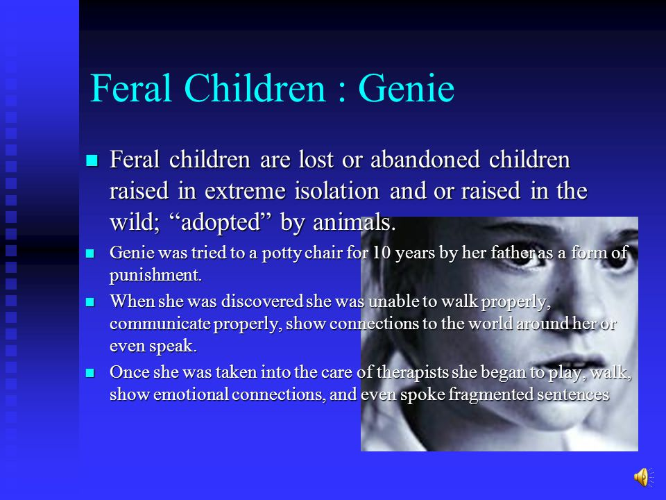 Adoption Studies: Children adopted with criminal parents that is adopted into a normal family still has a high chance of becoming involved in crime due to temperamental behaviours etc.