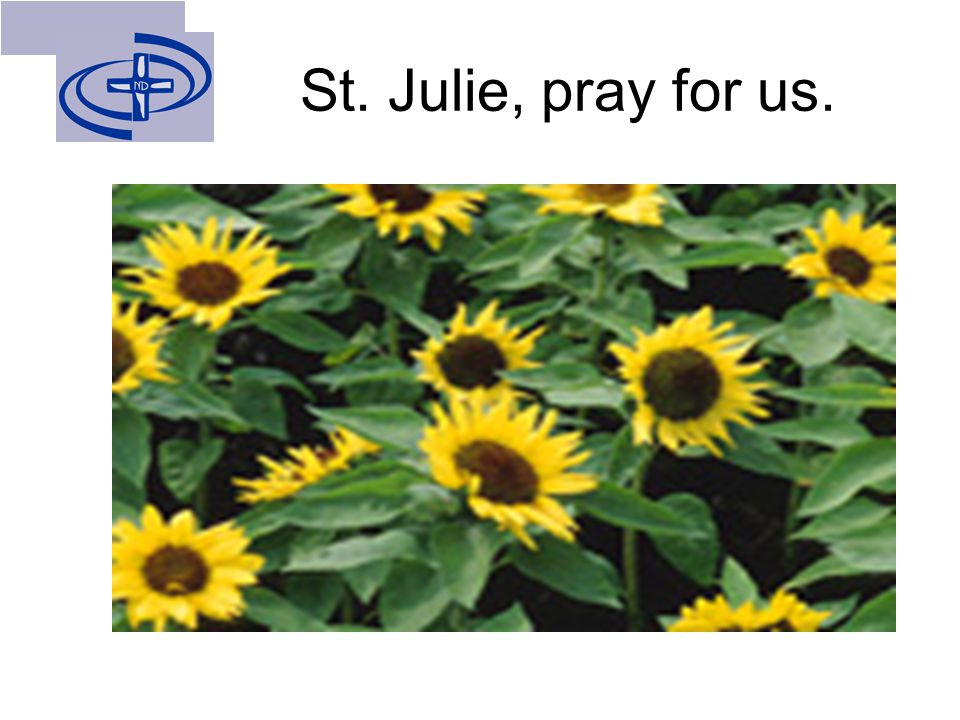 St. Julie, pray for us.
