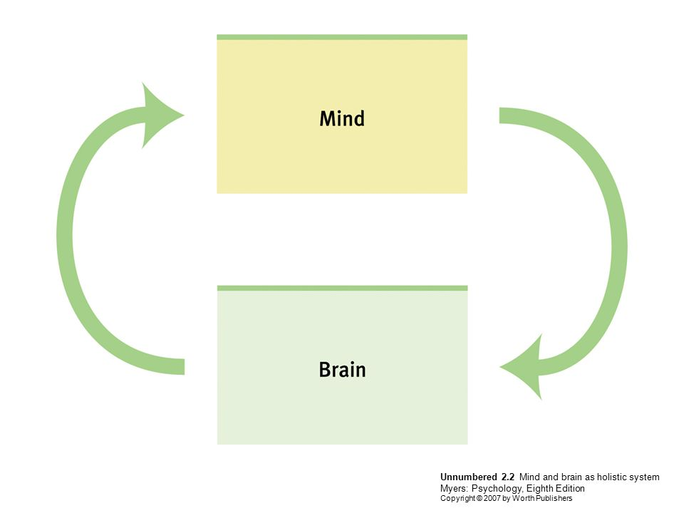 Unnumbered 2.2 Mind and brain as holistic system Myers: Psychology, Eighth Edition Copyright © 2007 by Worth Publishers
