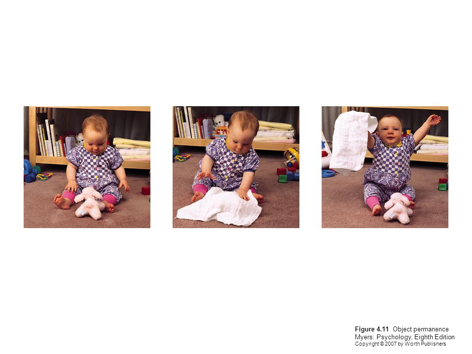 Figure 4.11 Object permanence Myers: Psychology, Eighth Edition Copyright © 2007 by Worth Publishers