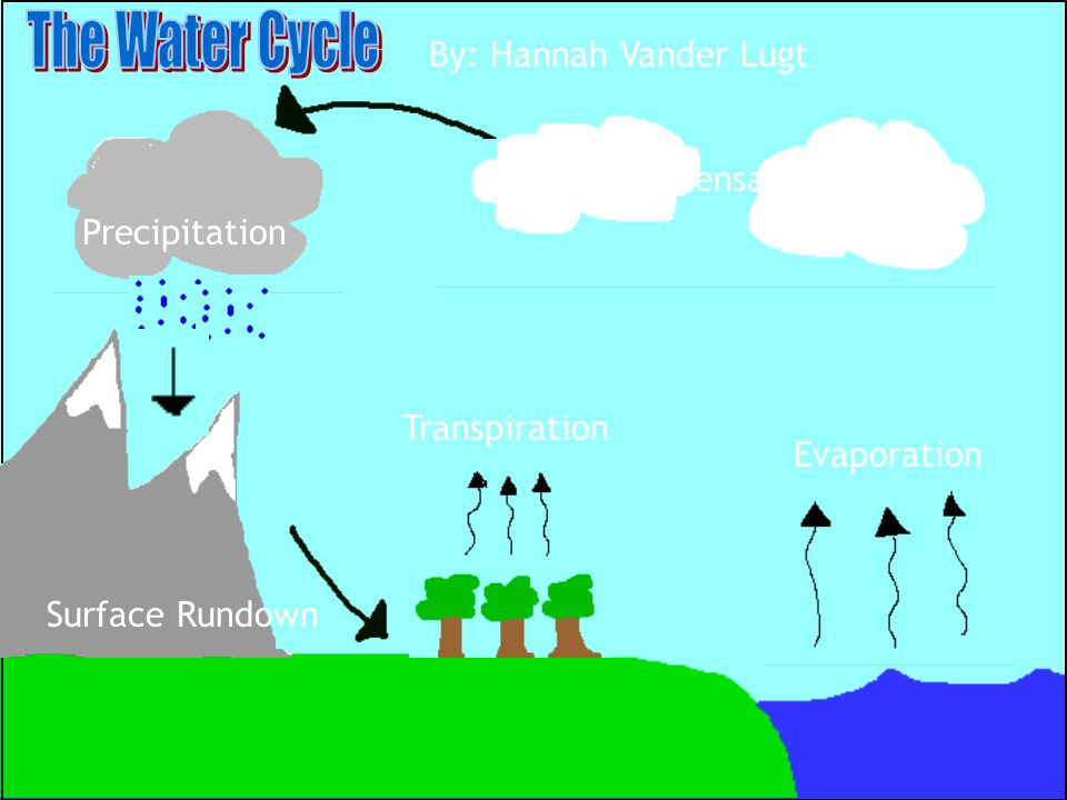 Eighth Grade The Water Cycle The Water Cycle  PowerPoint  Draw and animate