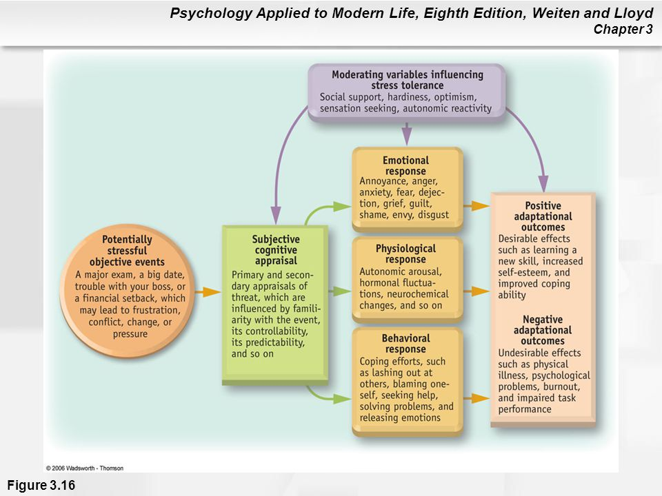 Psychology Applied to Modern Life, Eighth Edition, Weiten and Lloyd Chapter 3 Figure 3.16