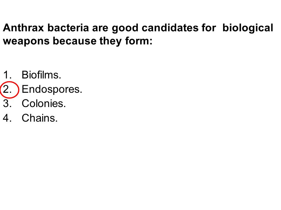 Anthrax bacteria are good candidates for biological weapons because they form: 1.Biofilms.