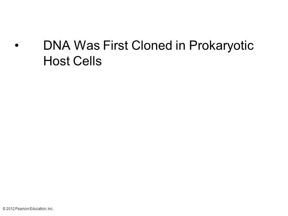 DNA Was First Cloned in Prokaryotic Host Cells