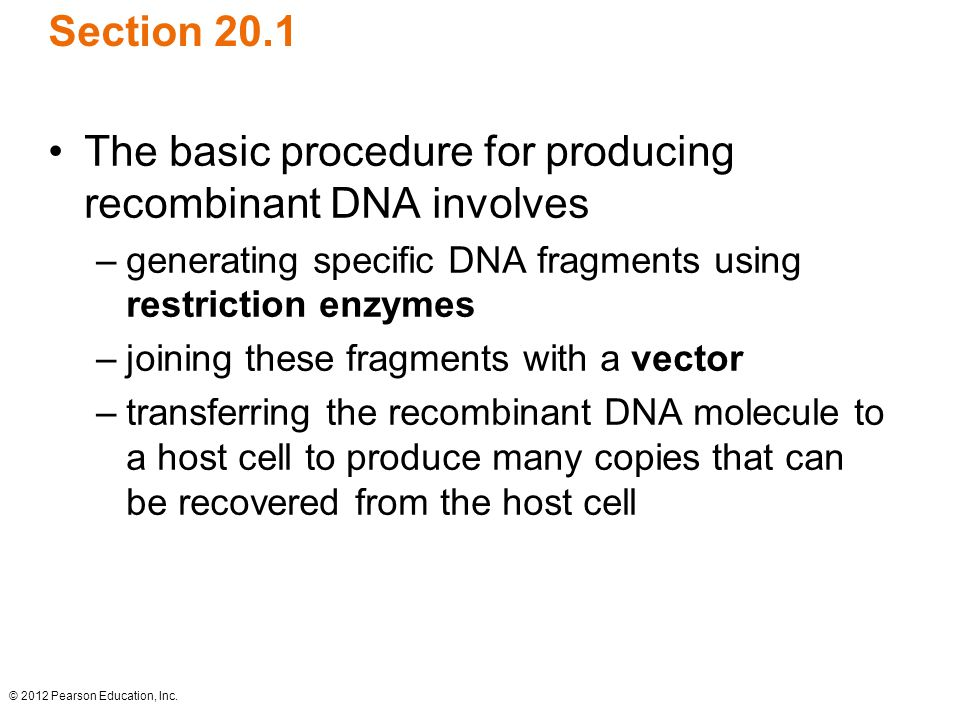 © 2012 Pearson Education, Inc. Section 20.1 The basic procedure for producing recombinant DNA involves –generating specific DNA fragments using restri